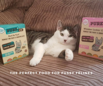 Purrfect food for fussy felines